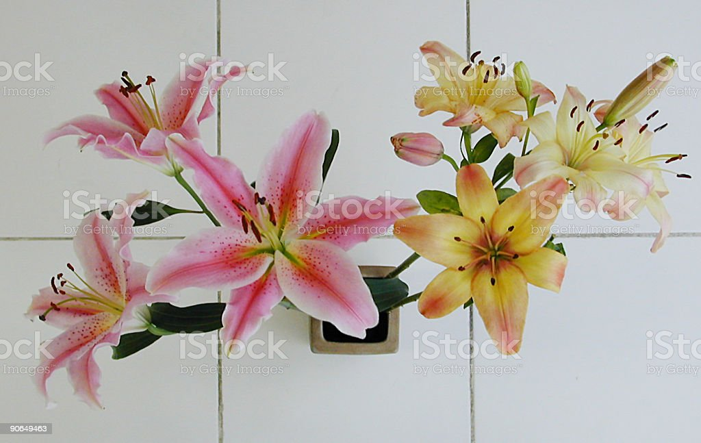Lilies on Tile royalty-free stock photo