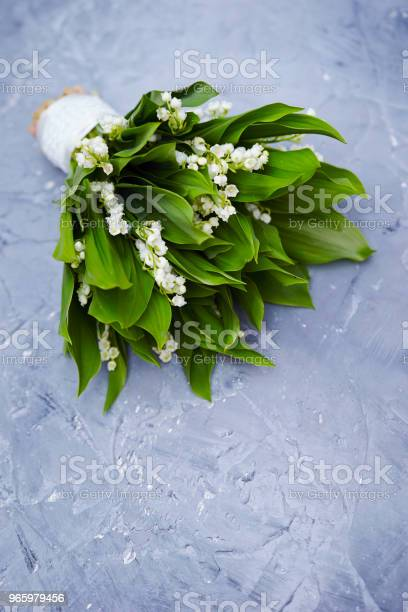 Lily Of The Valley Stock Photo - Download Image Now