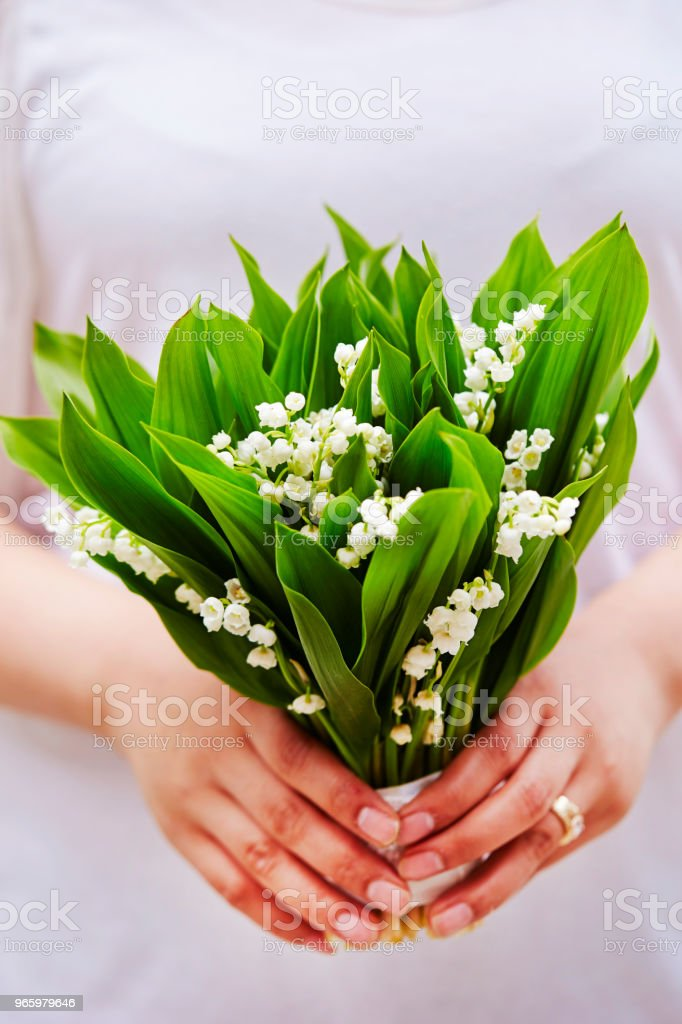 Lily of the valley - Royalty-free Bloem - Plant Stockfoto