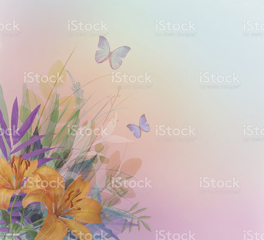 Lilys. royalty-free stock photo
