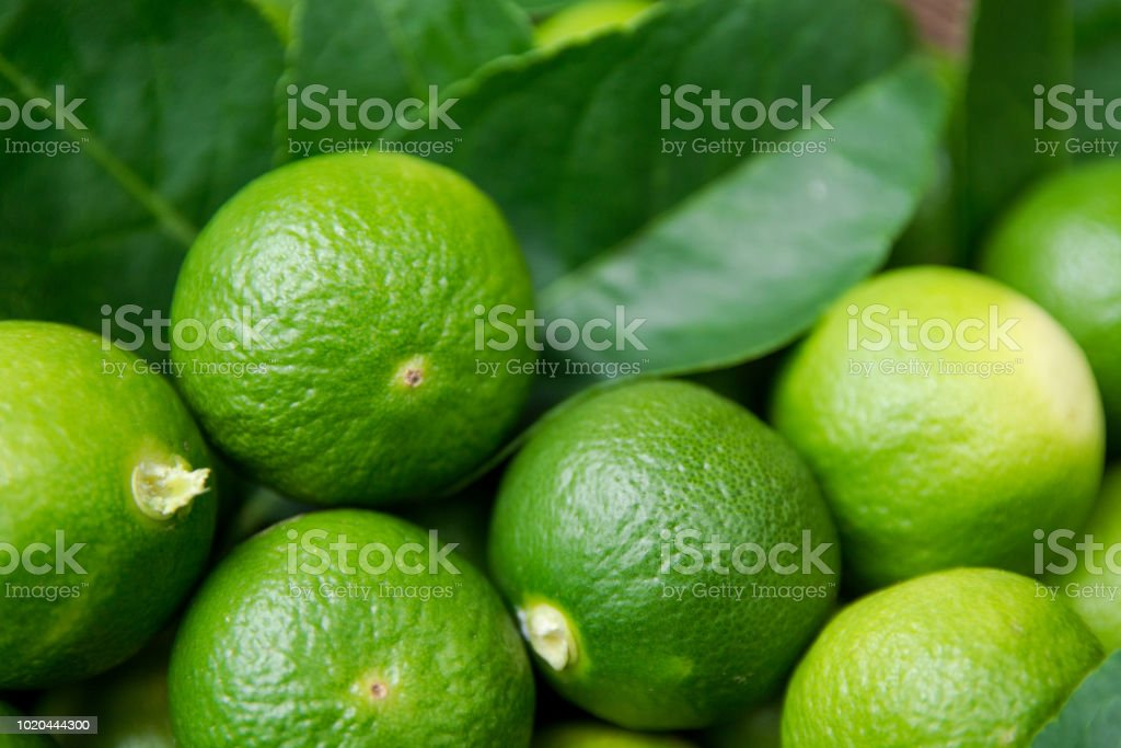 download lime