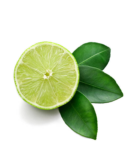 lime cut in half against a white background - lime stock photos and pictures