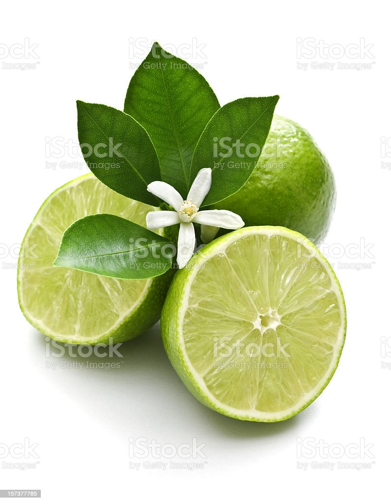 Lime, leaf and blossom royalty-free stock photo