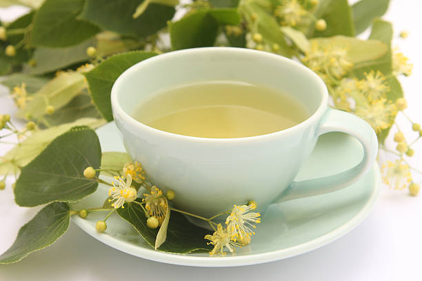 Lime tree tea stock photo
