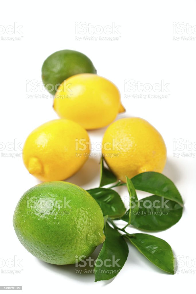 limes and  lemons royalty-free stock photo