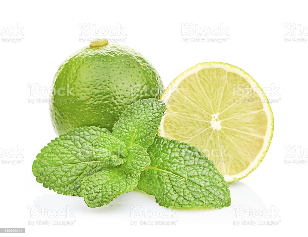 Limes and mint isolated on white background royalty-free stock photo