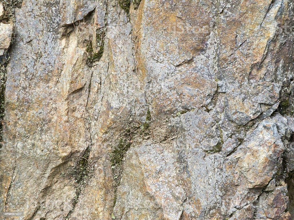 limestone background with moss stock photo