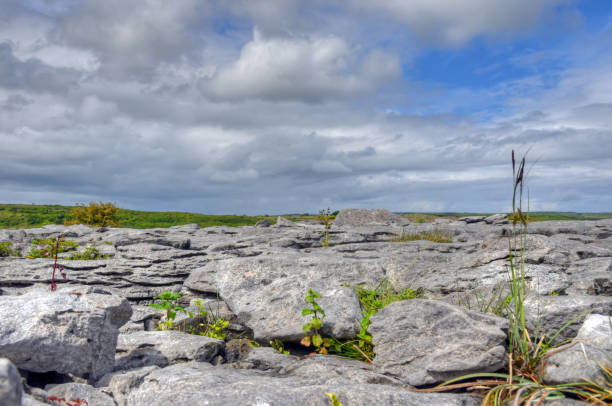 Limestone Field in the Burren, Ireland Limestone Field in the Burren, Ireland. portal dolmen stock pictures, royalty-free photos & images