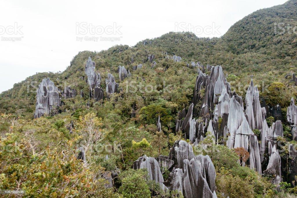Pinacles calcaires sur les pentes du Mont Api - Photo