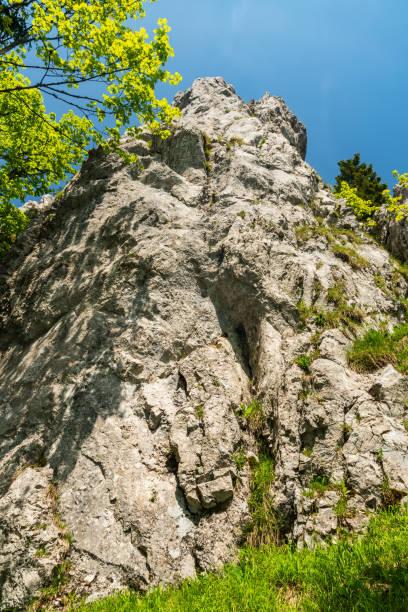 슬로바키아 의 벨카 파트라 산맥의 오스트라 언덕 에 나무 가지와 맑은 하늘과 석회암 바위 형성 - 벨리카 파트라 뉴스 사진 이미지