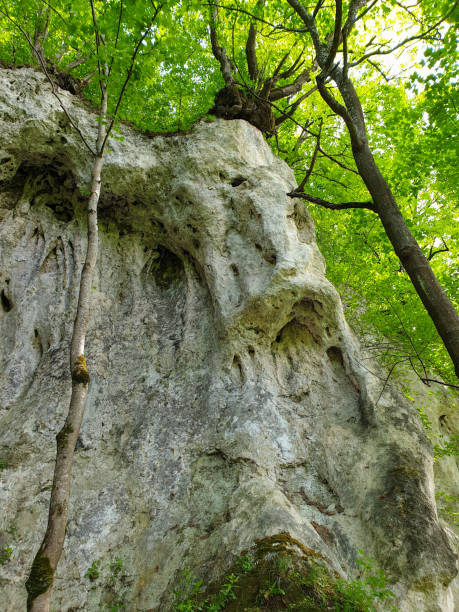 Limestone rocky formation at Pietrele Vorbitoare stock photo