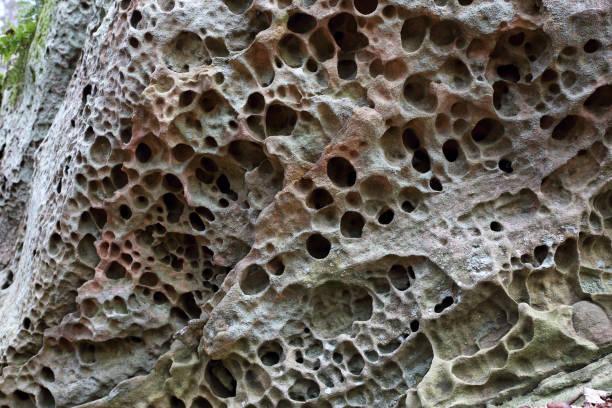 Kalkstein Verwitterung Muster – Foto