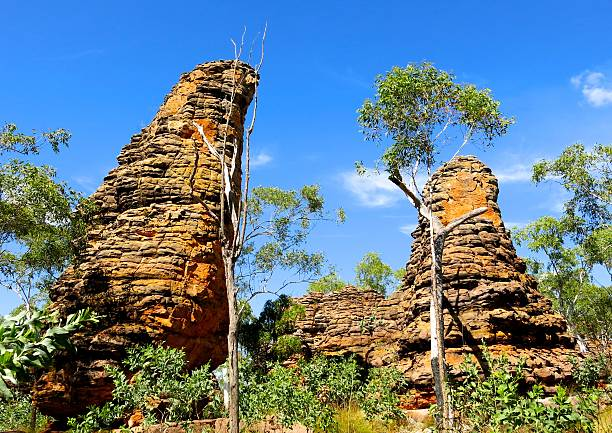 limmen national park, northern territory, australia stock photo