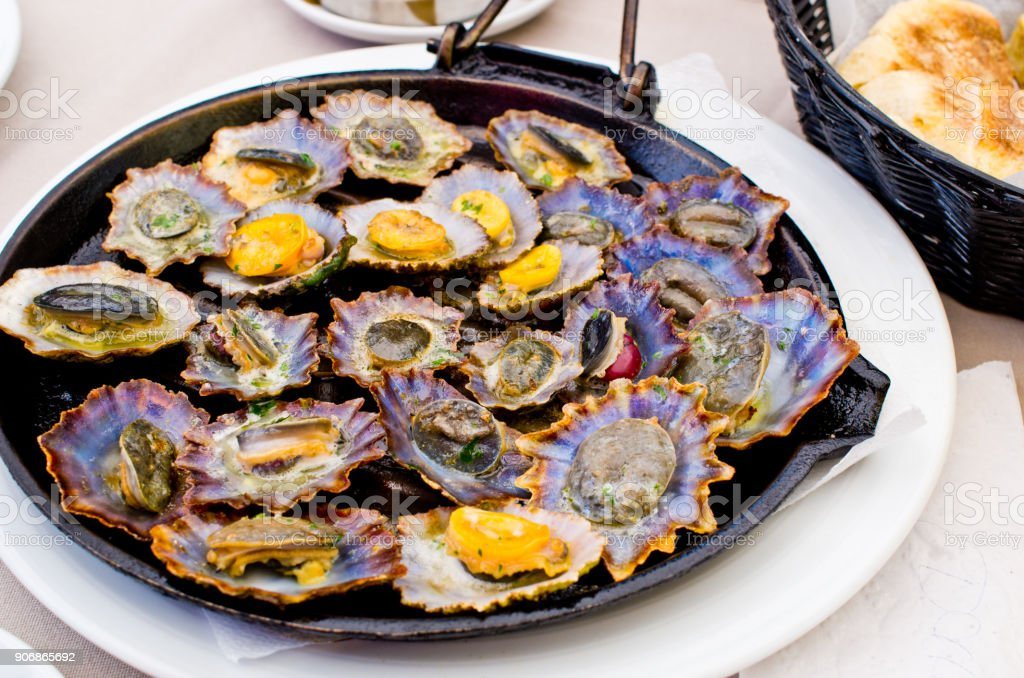 Limpets fried on the pan stock photo