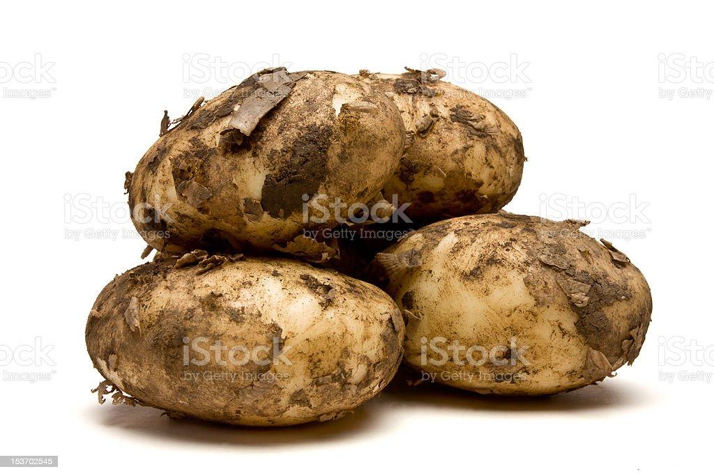 Lincoln new Potatoes royalty-free stock photo