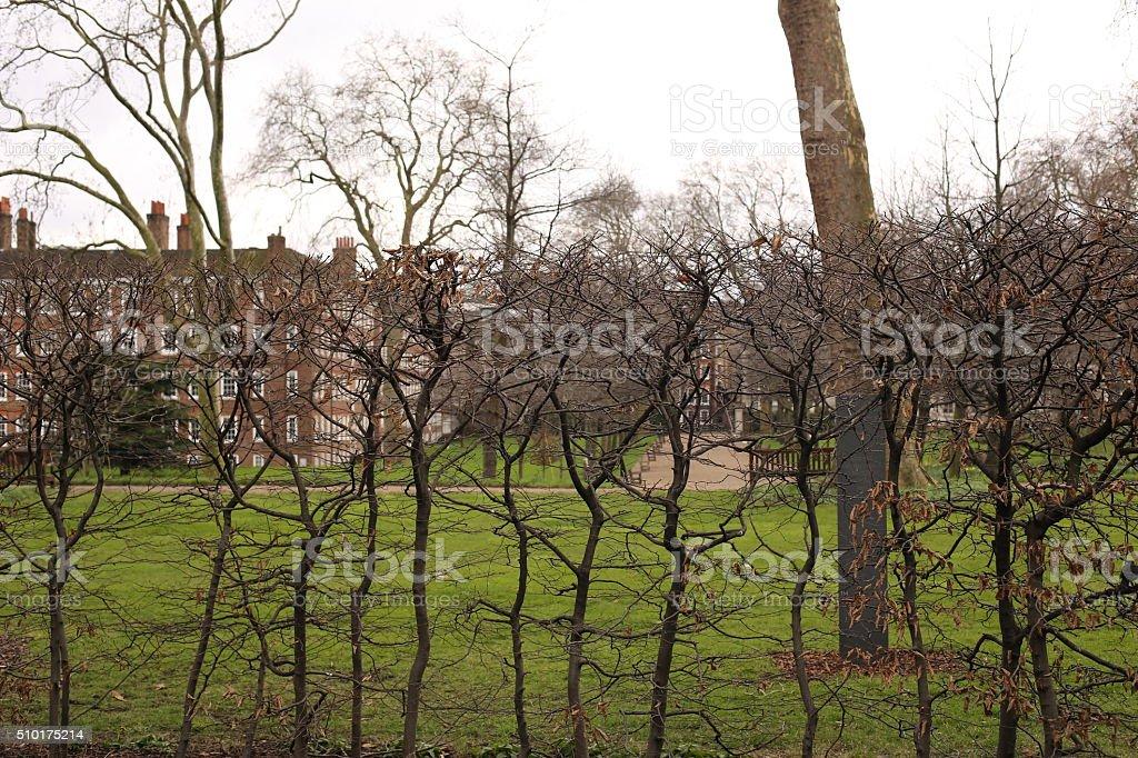 Lincolns Inn Fields stock photo