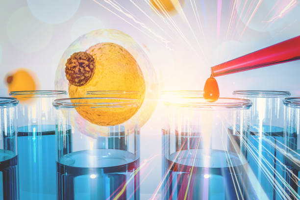 LincRNAs  human fat tissue Fat cell Sequencing High cholesterol stock photo