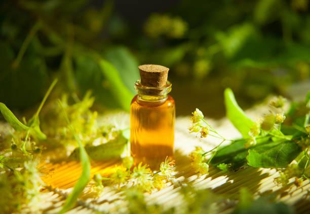 linden essential oil in  beautiful bottle on table - palm oil bottles imagens e fotografias de stock