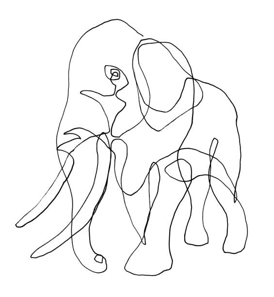 Line Drawing of Elephant stock photo