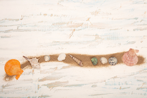 Line Of Beach Sand Decorated With Seashells Stock Photo - Download Image Now