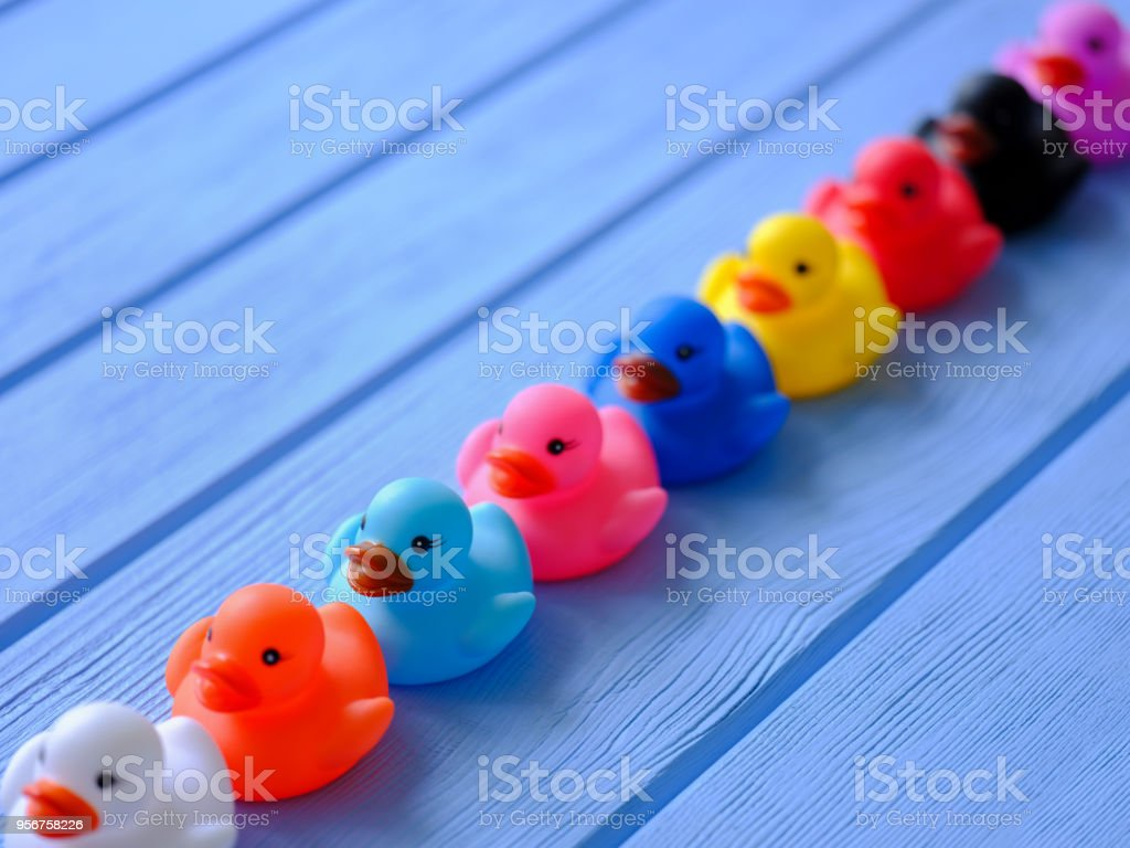 Line of rainbow multi-colored generic rubber ducks, moving in an orderly line, set on a blue wooden grained table. stock photo