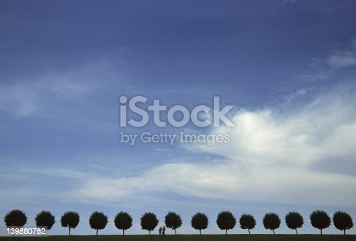 139880782istockphoto Line of trees (Peterhof) 139880782