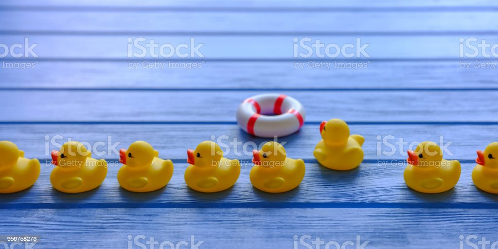 Line of yellow rubber ducks, moving in an orderly line, with one duck breaking away and heading for an inflateable life ring, set on a blue wooden grained table. stock photo