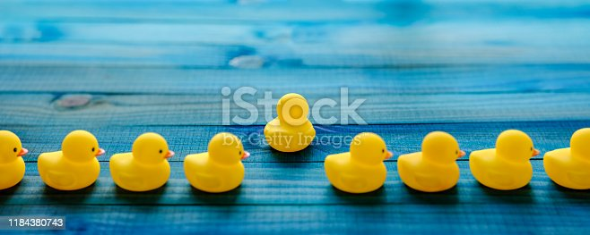 Abstract conceptual image depicting standing out from the crowd, hope, freedom, searching, following one's goals/aspirations, belief, perseverance, change, getting away from it all, keeping your ducks in a line etc.