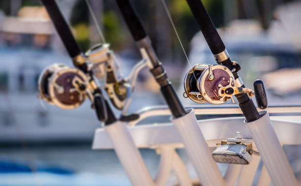 Lined up fishing poles Three fishing poles with baitcasting reels lined up in a row on the back of a boat fishing reel stock pictures, royalty-free photos & images