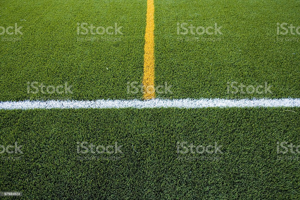 Lines in the grass field royalty-free stock photo