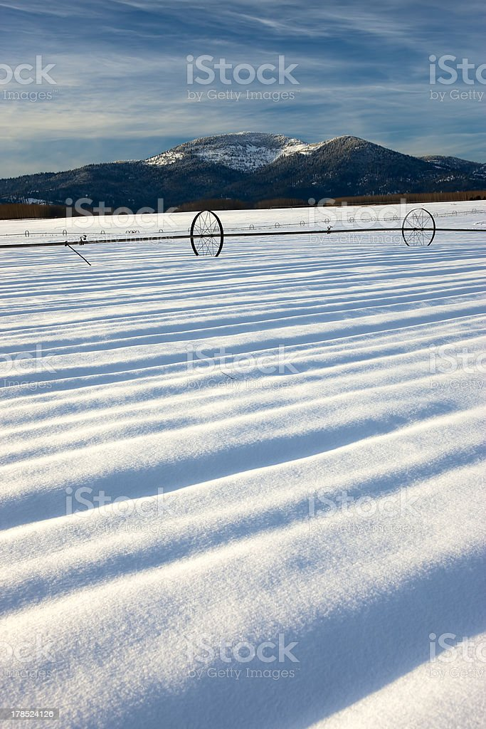 Lines in the snowy field. royalty-free stock photo