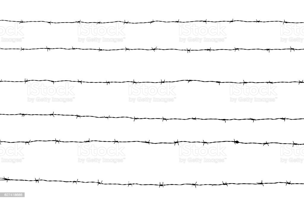 Lines of barbed wires against white horizontal background, copy space stock photo