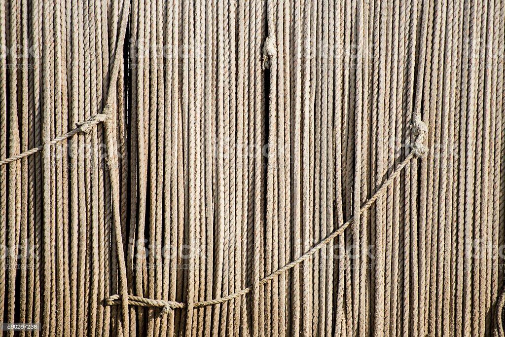 Lines of Rope royaltyfri bildbanksbilder