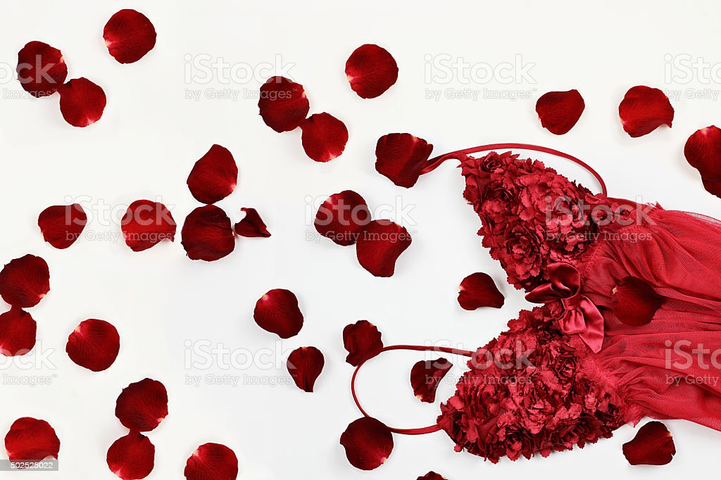 Lingerie and Rose Petals stock photo