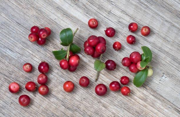 Lingonberry (Früchte von Vaccinium vitis-idaea) mit Blättern, auf Holzhintergrund – Foto