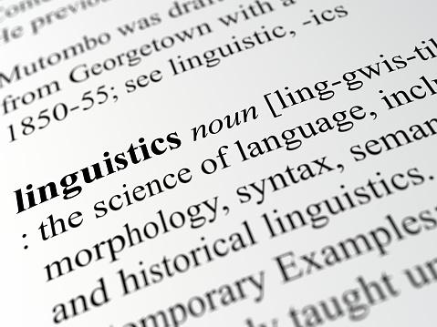 definition of linguistics