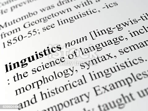 definition of linguistics