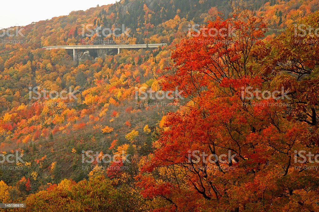 Linn Cove Viaduct in Autumn royalty-free stock photo
