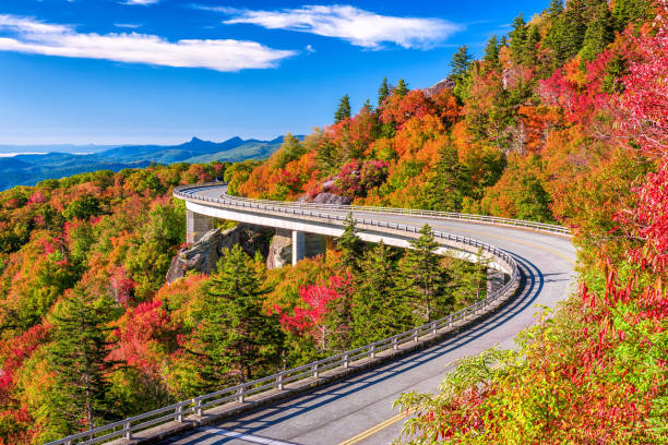 Linn Cove Viaduct Linn Cove Viaduct, Grandfather Mountain, North Carolina, USA. bay of water stock pictures, royalty-free photos & images