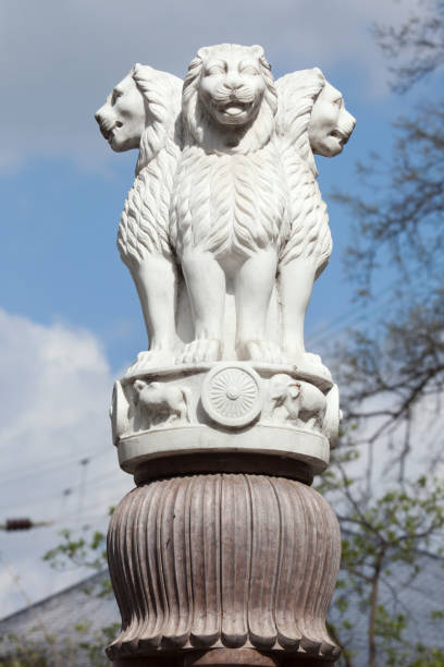 lion capital des piliers d'ashoka de sarnath. - chapiteau colonne architecturale photos et images de collection