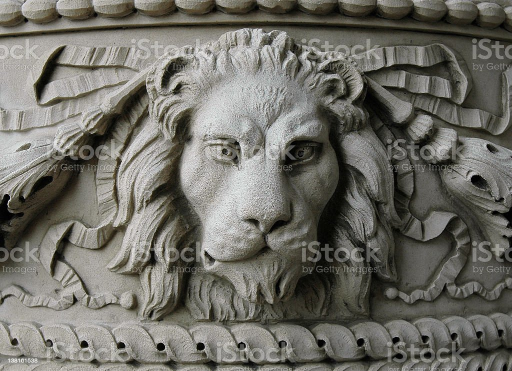 Lion Face stock photo