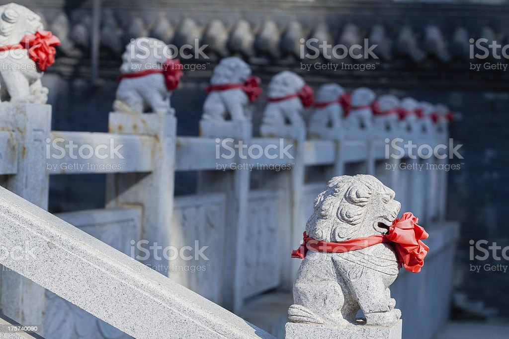 Lion fence royalty-free stock photo