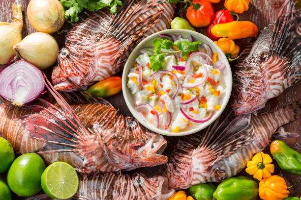 lion fish ceviche - lionfish stock photos and pictures