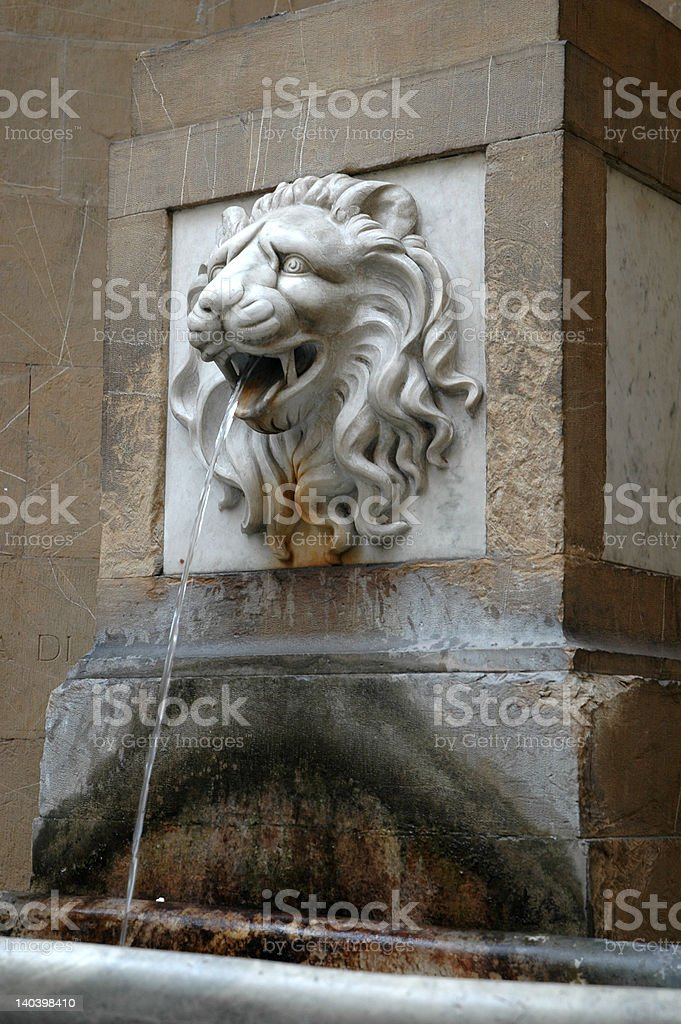 Lion fountain in Italy spits water stock photo