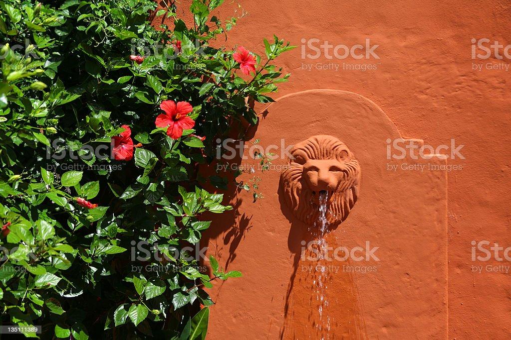 Lion Fountain royalty-free stock photo