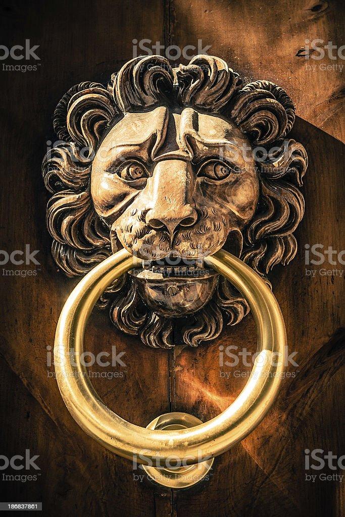 Lion Head Knocker, Frontal View royalty-free stock photo