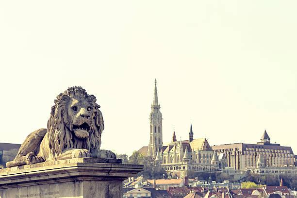 ライオンヘッドの鎖橋ブダペスト - マーチャーシュ教会 ストックフォトと画像