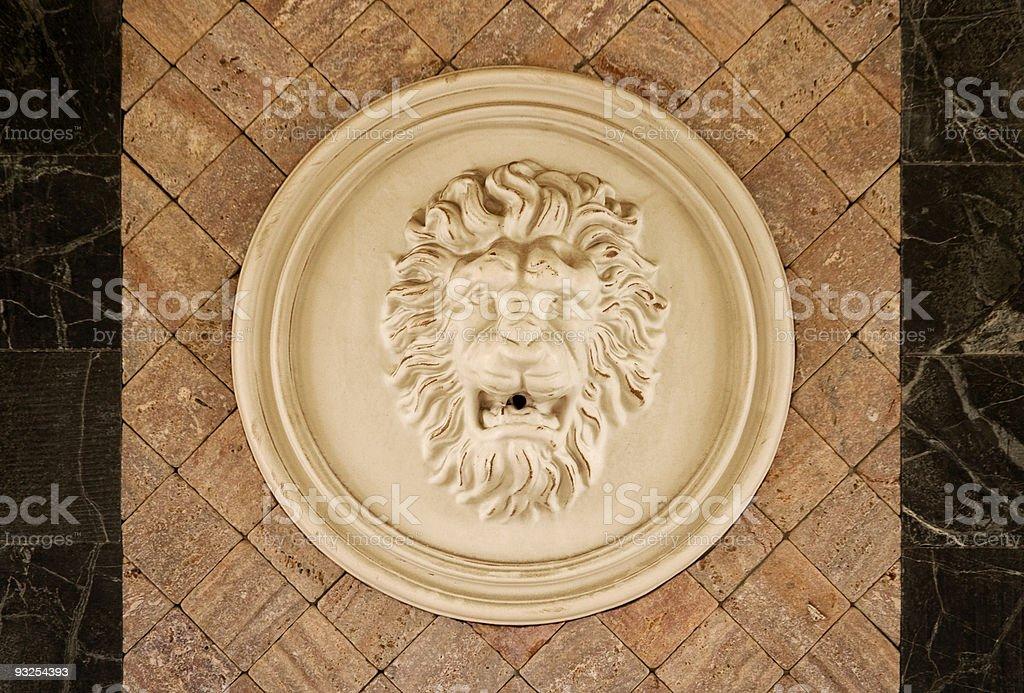 Lion head royalty-free stock photo
