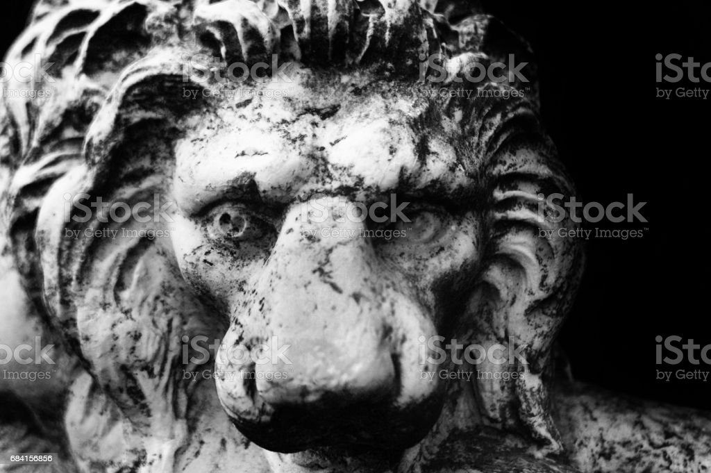 A lion head statue foto stock royalty-free