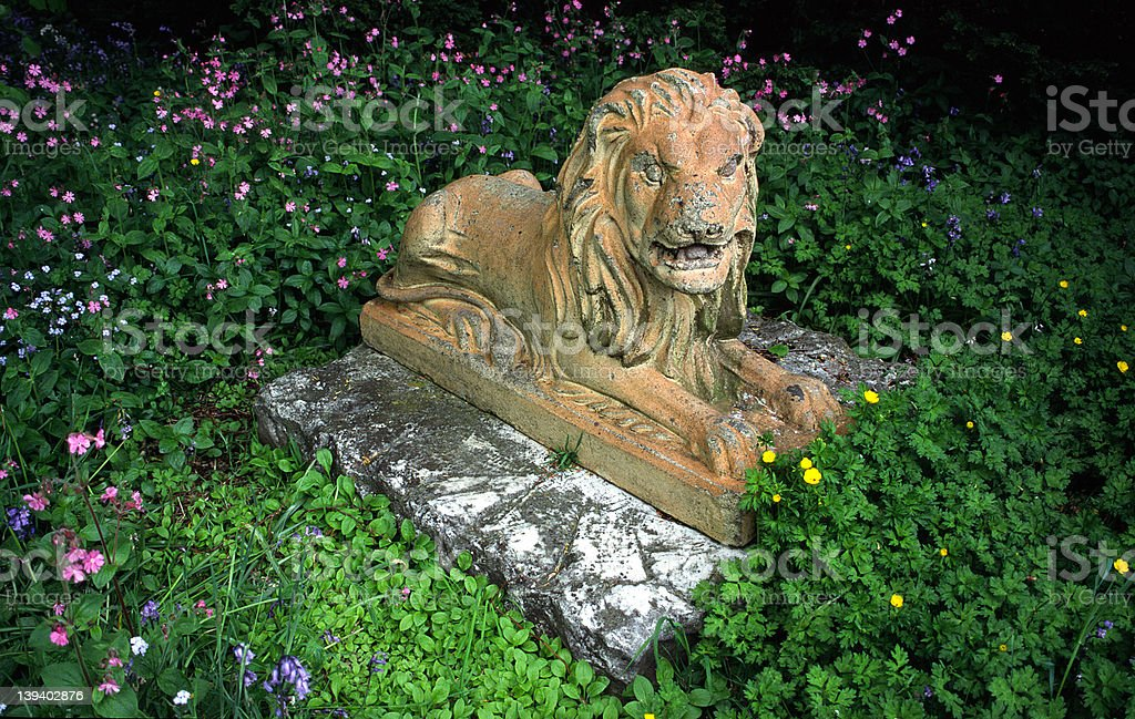 Lion in flowers (Beauty and the Beast!!!) royalty-free stock photo
